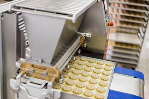 Food Conveyor Belt with Cookies